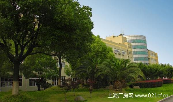 A8301 上海市奉贤区环城北路二楼 700平米厂房仓库办公研发楼出租