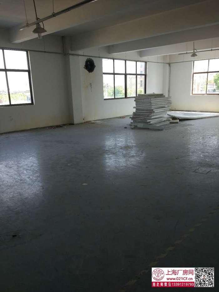 G1672 闵行区沁春路 独门独院厂房 层高6米5800平方米厂房仓库出租