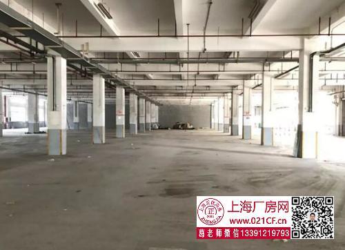 G1733 奉贤奉城园区1000平底楼带办公室厂房出租
