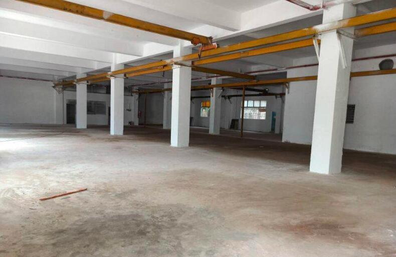 南京高淳经开区古潭路 2400平标准厂房出租 层高3.5米