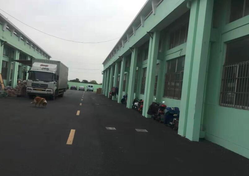 松江 洞泾  洞业路沈砖公路 大房东260平320平560平1300平米厂房出租 104板块