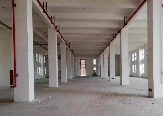松江新桥 新格路新出厂房一楼370,500等面积厂房仓库出租