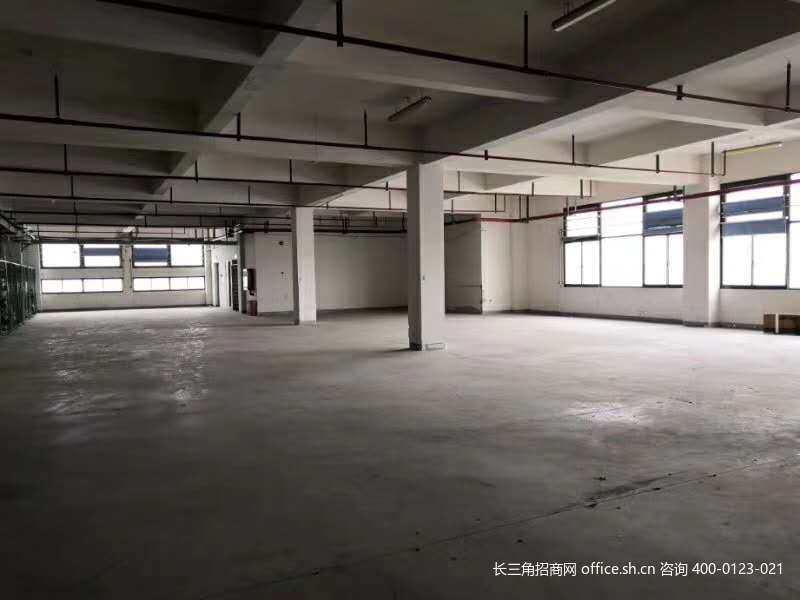 G2741松江新桥书林路多层厂房办公楼研发楼仓库出租 可分割出租
